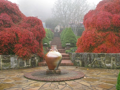 Cloudehill Gardens Maple Court